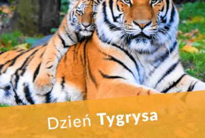 Dzień Tygrysa